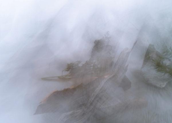 Misty Dream (SC2013PHMD01)