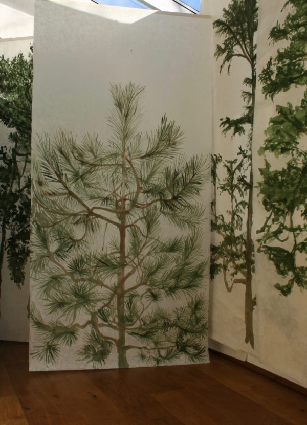 Evergreen Paper Forest